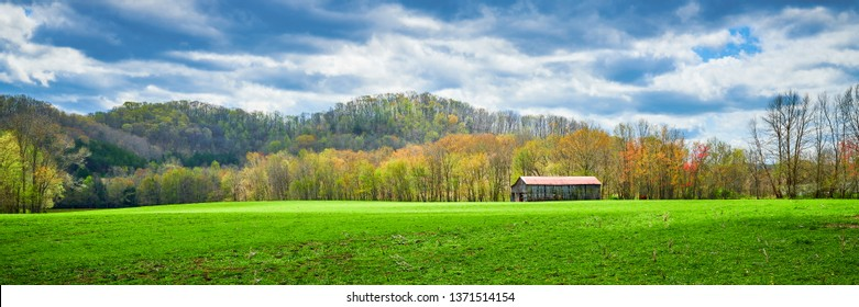 Kentucky tobacco barn in an open field with trees buding out in the distant.