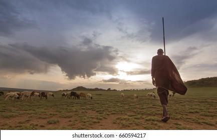 Kenyan masais
