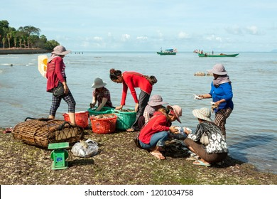 Kep, Cambodia - June 7, 2014: A scenic view of group of Cambodian crab seller women who are busy selecting their catch for make living on the shore in Kep, Cambodia