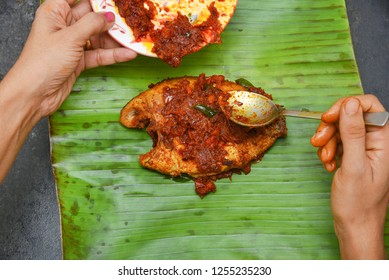 Kerala fish curry, Karimeen Pollichathu a popular hot and spicy baked fish in banana leaves Alleppey India. womans hand marinating with Indian spices Masala. Then wrapped in plantain leaf and grilled.