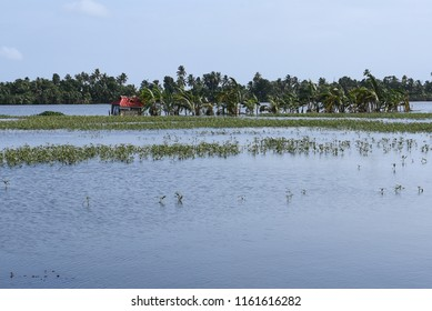 Kerala flood disaster house and places submerged in water in Kuttanad Alleppey India.