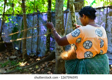 Kerala, India, circa 2019. Side view of an old woman making coir from coconut in a  coir factory in a village.