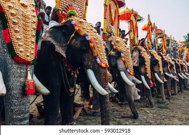 Kerala, India - March, 2016: Thrissur elephant festival. Elephant festival in Kerala. Decorated elephants in India.