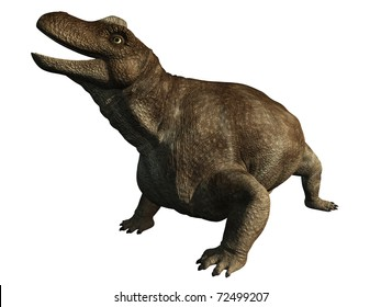 Keratocephalus is an extinct herbivorous dinosaur from the middle Permian of South Africa 255 million years ago, 3d digitally rendered illustration