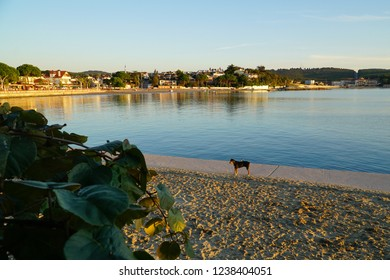 Kerpe is a small town in the district of Kocaeli in Turkey.