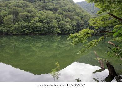 Ketoba pond in Shirakami Sanchi, Aomori, Japan