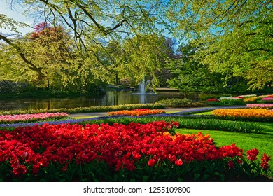Keukenhof flower garden with blooming tulip flowerbeds. One of the world's largest flower gardens. Lisse, the Netherlands.