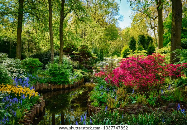 Keukenhof Flower Garden Known Garden Europe Stock Photo Edit Now