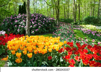KEUKENHOF GARDEN, NETHERLANDS. Keukenhof is the world's largest flower garden. Keukenhof Garden, Lisse, Netherlands - May 11, 2015.