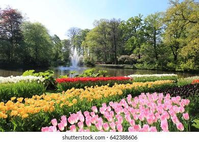 Keukenhof gardens Natherlands