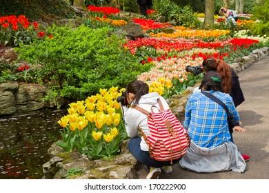 KEUKENHOF GARDENS, NETHERLANDS - MAY 08:tourists making photo of flowers in spring garden Keukenhof, Netherlands. Keukenhof also known as the Garden of Europe, is the world's largest flower garden.