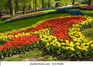 Keukenhof - Largest flower garden in Europe - Holland