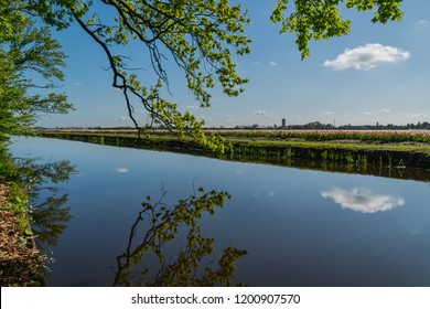 Keukenhof, Lisse, the Netherlands - May 3, 2018 : View from the Keukenhof on the surrounding tulip fields