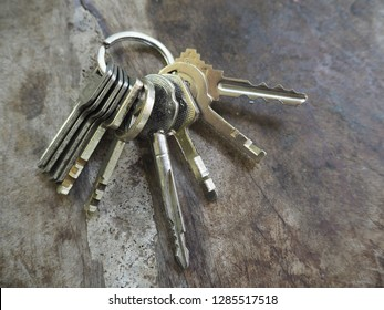 key chain, put many keys
