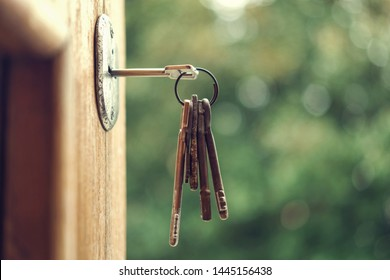 Key in the keyhole, blurry green nature background,