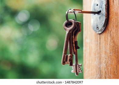 Key in the keyhole, blurry green nature background