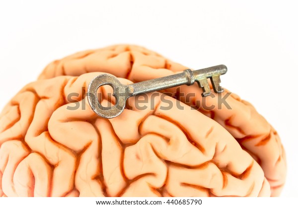 Key resting on the brain,  isolated on white background