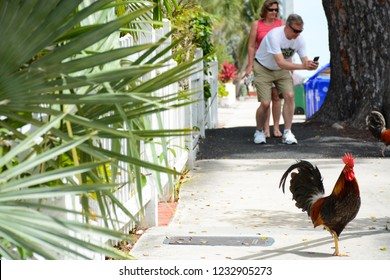KEY WEST, FL, USA - APRIL 23, 2018: Street view in Old Town of Key West island on the south of Florida
