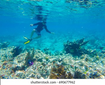Key West Snorkelling in the Florida Keys Marine Sanctuary