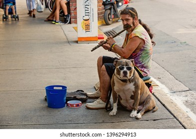 Key West, USA-december 26. 2015 : Street musian or man playing flute with dog in Key West, USA. Busker performing music in public place for tips in blue bucket. Busking and earning concept