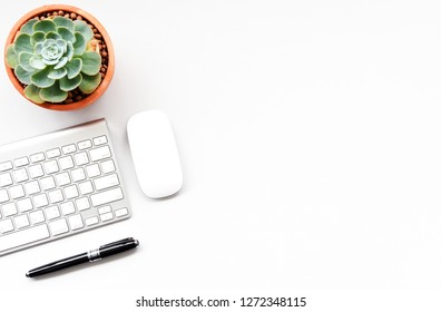 keyboard,mouse computer and Succulent on the white desk copy space for your text