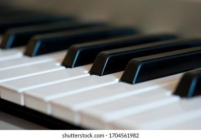 Keys of a musical instrument.