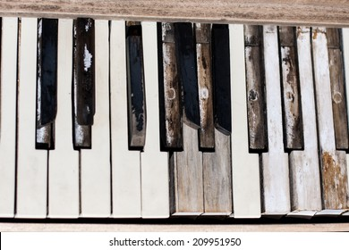 The keys of a piano left to the weather and sun in the Nevada desert