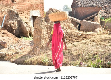 KHAJURAHO, INDIA 23 FEBRUARY 2018 : Unidentified rural Indian women walking to farm for work with basket on her heads, Daily lifestyle in rural area in India.