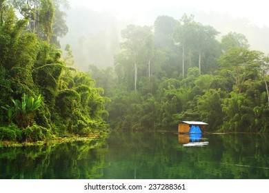 Khao Sok National Park, SuratThani province Southern Thailand. (Chiao Lan reservoir dammed by the Ratchaprapha dam).