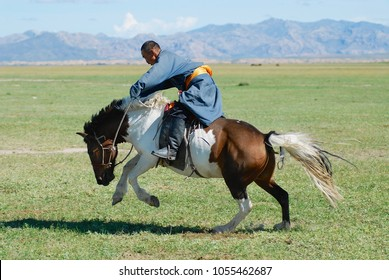 KHARKHORIN, MONGOLIA - AUGUST 19, 2006: Unidentified Mongolian man wearing traditional costume rides wild horse in a steppe in Kharkhorin, Mongolia.