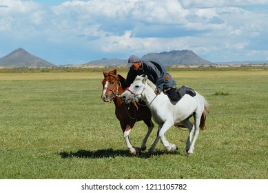 Kharkhorin, Mongolia - August 19, 2006: Unidentified Mongolian man wearing traditional costume  rides two wild horses in steppe in Kharkhorin, Mongolia.