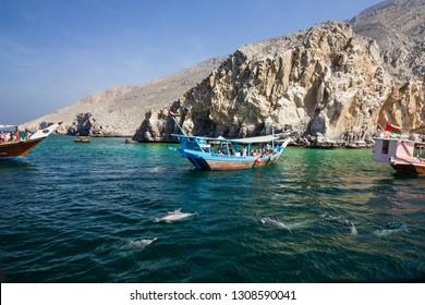 Khasab, Oman - Feb 9, 2019: Dolphins and tourist dhow boats, Musandam peninsula fjords.