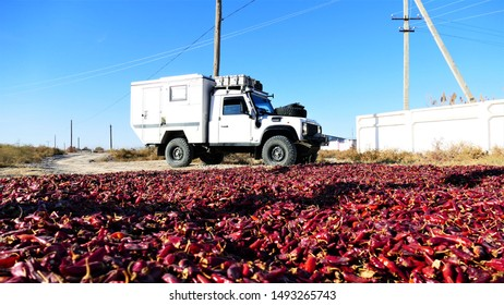 Khiva, Uzbekistan - 11.03.2018: Silkroad travels. An Expedition mobile is exploring the silkroad in Uzbekistan while chili pepper Harvest in the city of Khiva