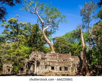 Khmer Architecture. Angkor Wat. Siem Reap. Cambodia.