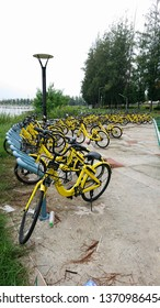 Khon Kaen, Thailand - September 8, 2018: ofo bicycle parking in Khon Kaen University before Ofo bike head office in China cancel the Ofo bicycle project in Thailand on August 28, 2018
