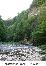 Khosta River and White Rocks in the relict yew and boxwood grove in the Caucasus Nature Reserve (UNESCO World Heritage Site), Sochi, Krasnodar Krai, Russia