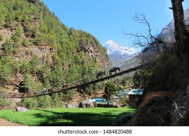 Khumbila Mountain Rises over Mountain Valley in Nepal in Sagarmatha national park near Jorsalle village. In the foreground, slightly blurry silhouettes of pack mules walking along a suspension bridge