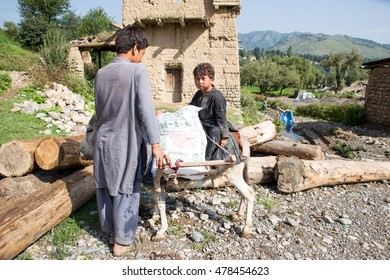 Khyber Agency, PAKISTAN - AUG 09: A Dinky used by transportation Purpose in Tirah Khyber Agency, on 09 AUG, 2015 Khyber Agency.