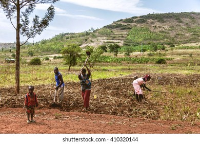 KIBUYE, RWANDA, AFRICA - SEPTEMBER 11, 2015: Unknown African workers. The women working on fields take their children and work.