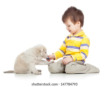 kid boy playing with puppy dog