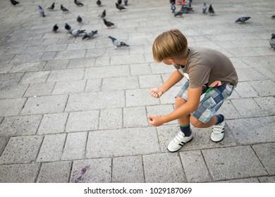 kid is feeding birds