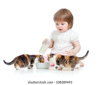 kid feeding cats with milk