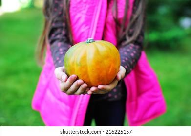 Kid girl in pink warm vest holding little pumpkin in the garden