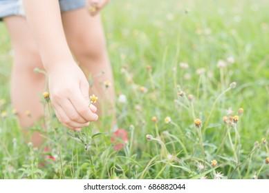 Kid hand keeping the flower