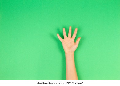 Kid hand palm or showing five fingers on green background