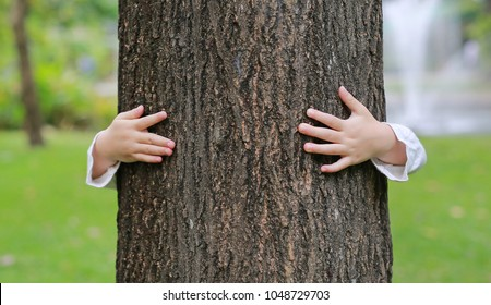 Kid hands embracing nature. Child hug a tree in the park.