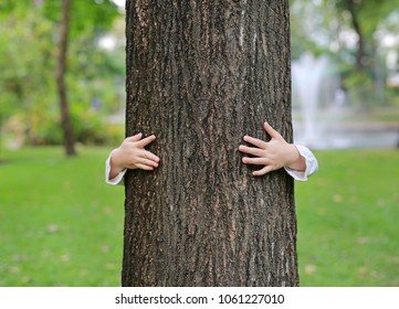 Kid hide body behind trunk with hands embracing tree.