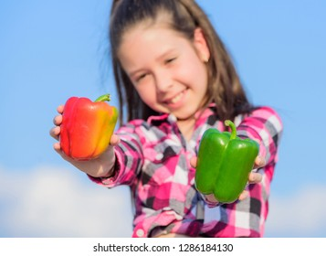Kid hold ripe pepper harvest. Child presenting kinds of pepper. Fall harvest homegrown vegetables. Choose which. Kid girl hold red and green peppers sky background. Alternative decision concept.
