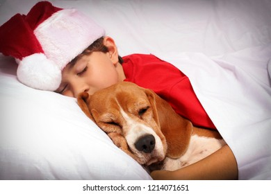 Kid and little dog sleeping together while waiting for Santa