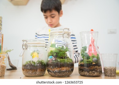 Kid plant small tree in the bottle in the science class